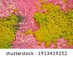 grunge wall background. old dry ... | Shutterstock . vector #1913419252