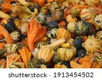 Colorful Gourds In A Crate