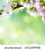 spring background  | Shutterstock . vector #191349998