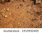wet ground  yellow soil and... | Shutterstock . vector #1913932405