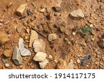 wet ground  yellow soil and... | Shutterstock . vector #1914117175