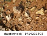 wet ground  yellow soil and... | Shutterstock . vector #1914231508