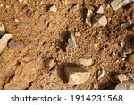 wet ground  yellow soil and... | Shutterstock . vector #1914231568
