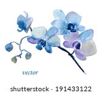 blue orchid flower. watercolor... | Shutterstock .eps vector #191433122
