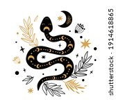 floral snake drawing mystic...   Shutterstock . vector #1914618865