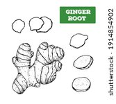 ginger root hand drawn... | Shutterstock . vector #1914854902