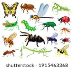 Cartoon Insects. Butterfly ...