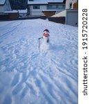 Little Snowman Standing In A...