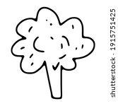 doodle broccoli. outline... | Shutterstock .eps vector #1915751425