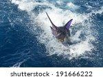 blue marlin fish 2 | Shutterstock . vector #191666222