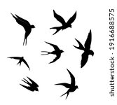 swallows. black silhouette on a ...   Shutterstock .eps vector #1916688575