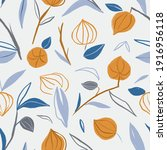 cape gooseberry seamless...   Shutterstock . vector #1916956118