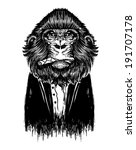 Black Monkey Vector. Animal...