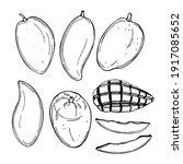 hand drawn mango fruit. vector...   Shutterstock .eps vector #1917085652