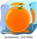 fresh orange frozen in ice | Shutterstock .eps vector #19173583