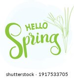 hello spring  tender lettering... | Shutterstock .eps vector #1917533705