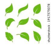 leaf vector icon logo. vegan... | Shutterstock .eps vector #1917575078