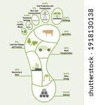 carbon footprint infographic.... | Shutterstock .eps vector #1918130138