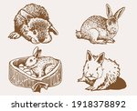 graphical vintage set of... | Shutterstock .eps vector #1918378892