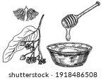 linden honey. honey and linden... | Shutterstock .eps vector #1918486508