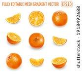 set of ripe oranges on a white...   Shutterstock .eps vector #1918492688