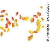 oak  maple  wild ash rowan... | Shutterstock .eps vector #1918626278