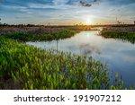 Lush Viera Wetlands At Sunset