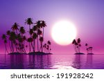 Purple Sunset Over Coconut...