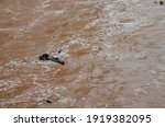 Water Flood On River After...