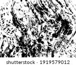 abstract graphic decay surface. ... | Shutterstock .eps vector #1919579012