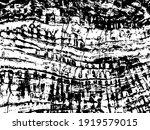 grunge dark stone pattern.... | Shutterstock .eps vector #1919579015
