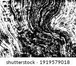 retro graphic plaster pattern.... | Shutterstock .eps vector #1919579018