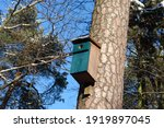 A Nesting Box For Starlings...