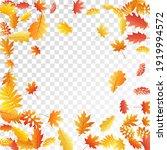 oak  maple  wild ash rowan... | Shutterstock .eps vector #1919994572