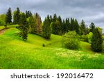 summer landscape. forest near the meadow path on the hillside with some flowers in fresh grass in mountains - stock photo
