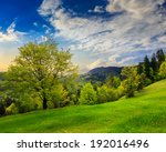 summer; landscape. forest on the meadow near the forest on hillside of mountain in fog at sunrise - stock photo