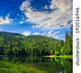 view on lake near the pine forest on mountain background  early in the morning  - stock photo
