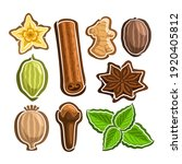 set icons for culinary spices ... | Shutterstock . vector #1920405812