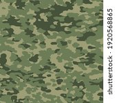 military camouflage texture... | Shutterstock .eps vector #1920568865