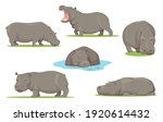 hippo in different poses flat... | Shutterstock .eps vector #1920614432