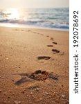 Footprints On The Beach Sand...