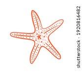 hand drawn marine set. sea... | Shutterstock .eps vector #1920816482
