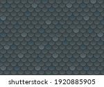 vector seamless pattern of... | Shutterstock .eps vector #1920885905