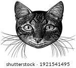 portrait of a smiling cat. art... | Shutterstock .eps vector #1921541495