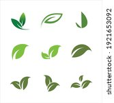 leaves icon vector set isolated ... | Shutterstock .eps vector #1921653092