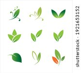 leaves icon vector set isolated ... | Shutterstock .eps vector #1921653152