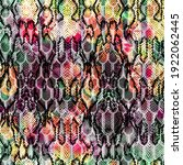 Seamless Colorful Snake Texture ...