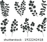 eucalyptus branches collection.... | Shutterstock .eps vector #1922242418
