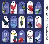 Tags With Exotic Birds...