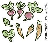 set of vegetables. beets ... | Shutterstock .eps vector #1922674742